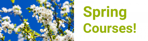 Spring courses