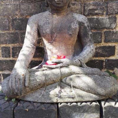 Buddha in the courtyard